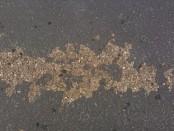 Concrete Driveway Paint Peeling